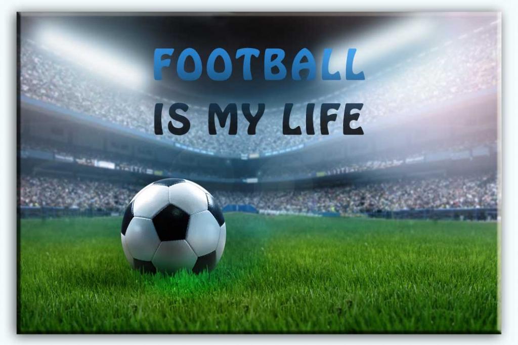 Dětský obraz Fotbalový stadion, 90x60 cm
