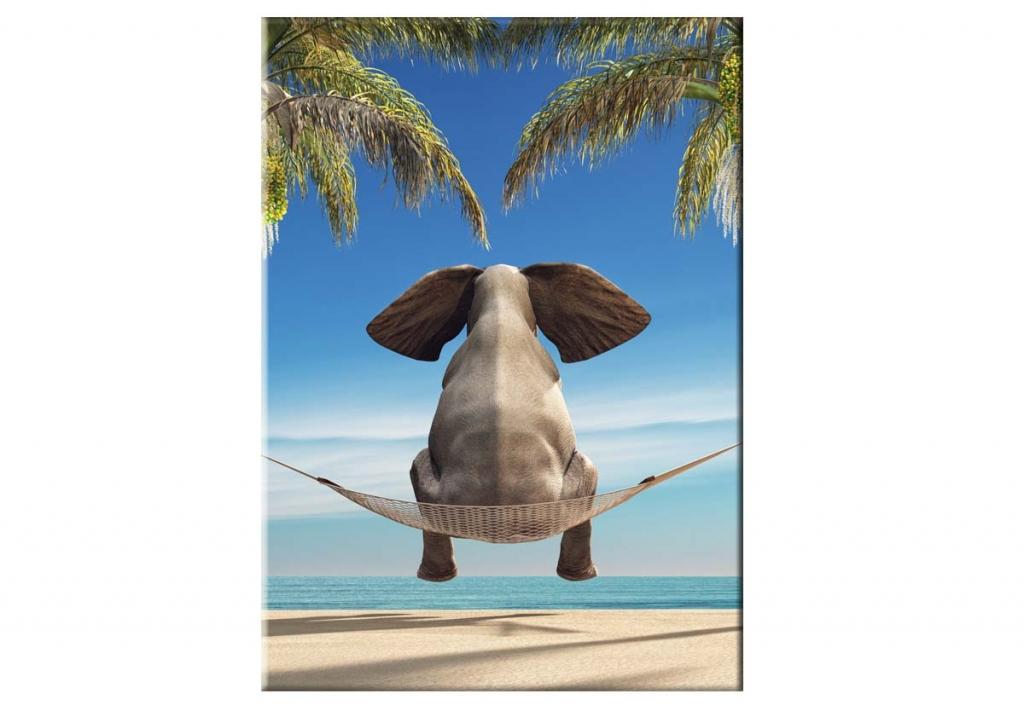 Dětský obraz vtipný slon, 50x70 cm