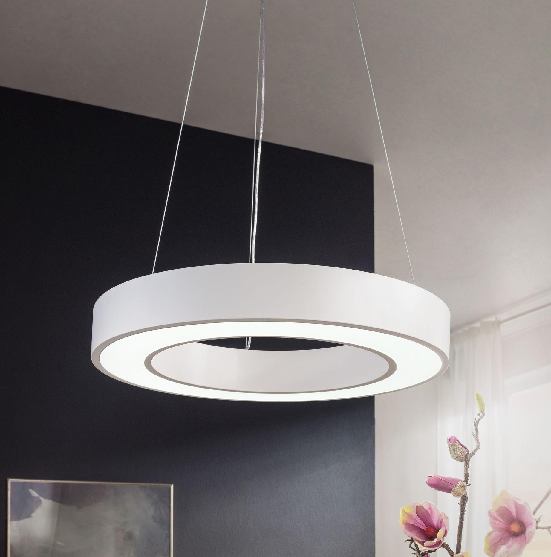 LED závěsné svítidlo Circle, 60 cm, bílá