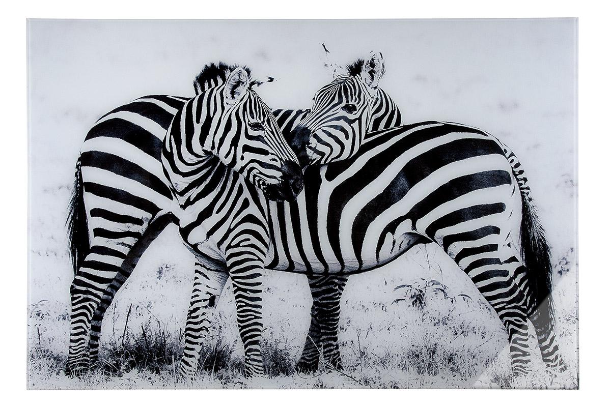 Nástěnný obraz Zebras, bílá / černá