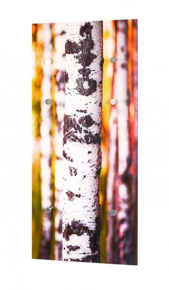 Nástěnný věšák Birch, 90 cm