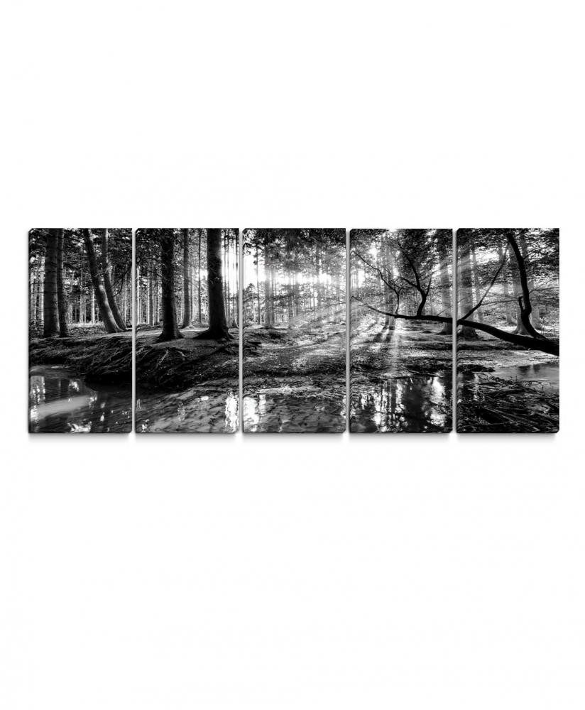 Obraz Černobílá pohoda lesa, 100x45 cm