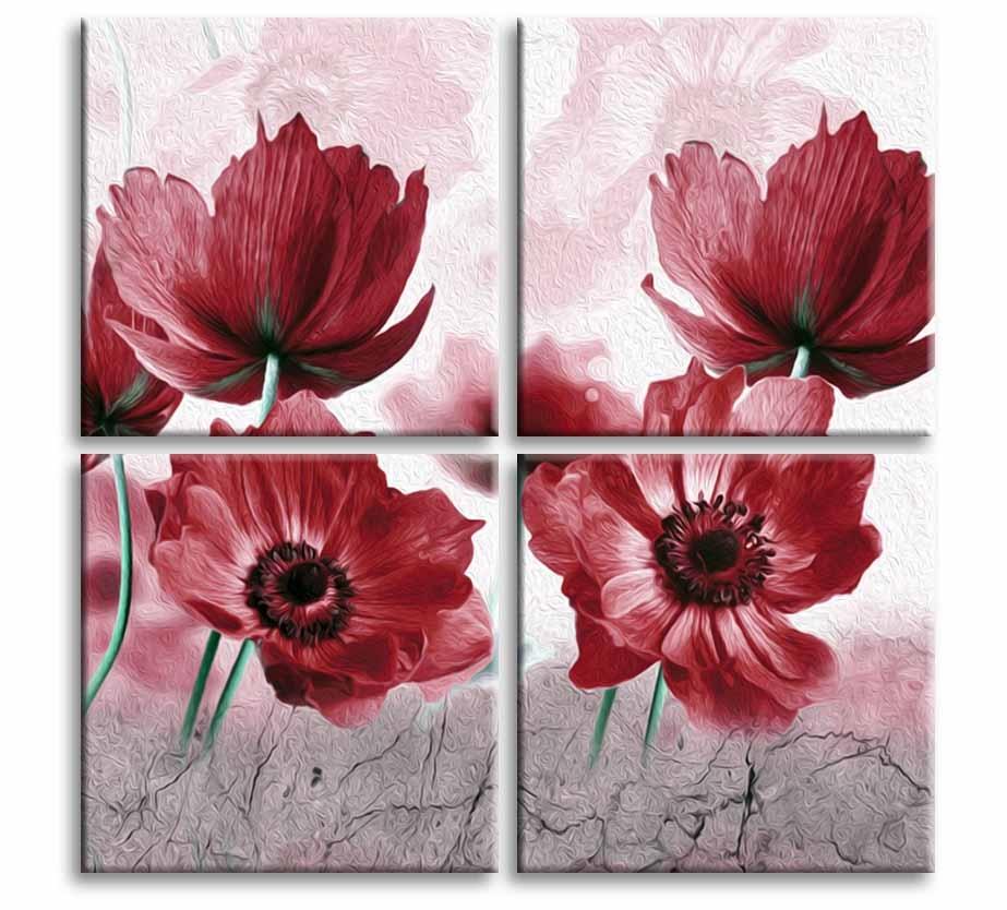 Obraz Červený mák, 50x50 cm