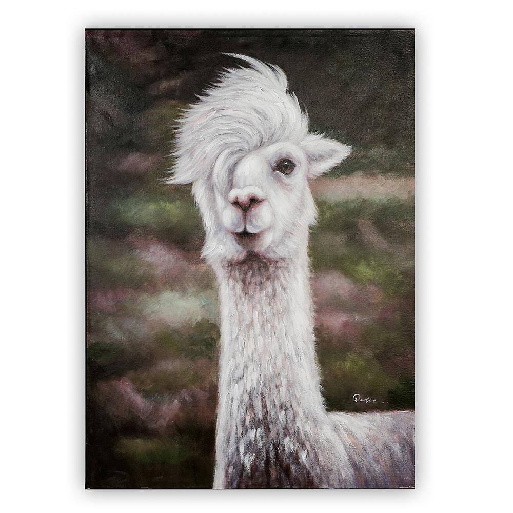 Obraz Cool Lama 100 cm, olej na plátně