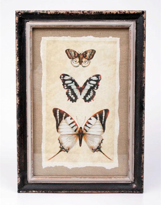 Obraz Motýli, 34x24 cm