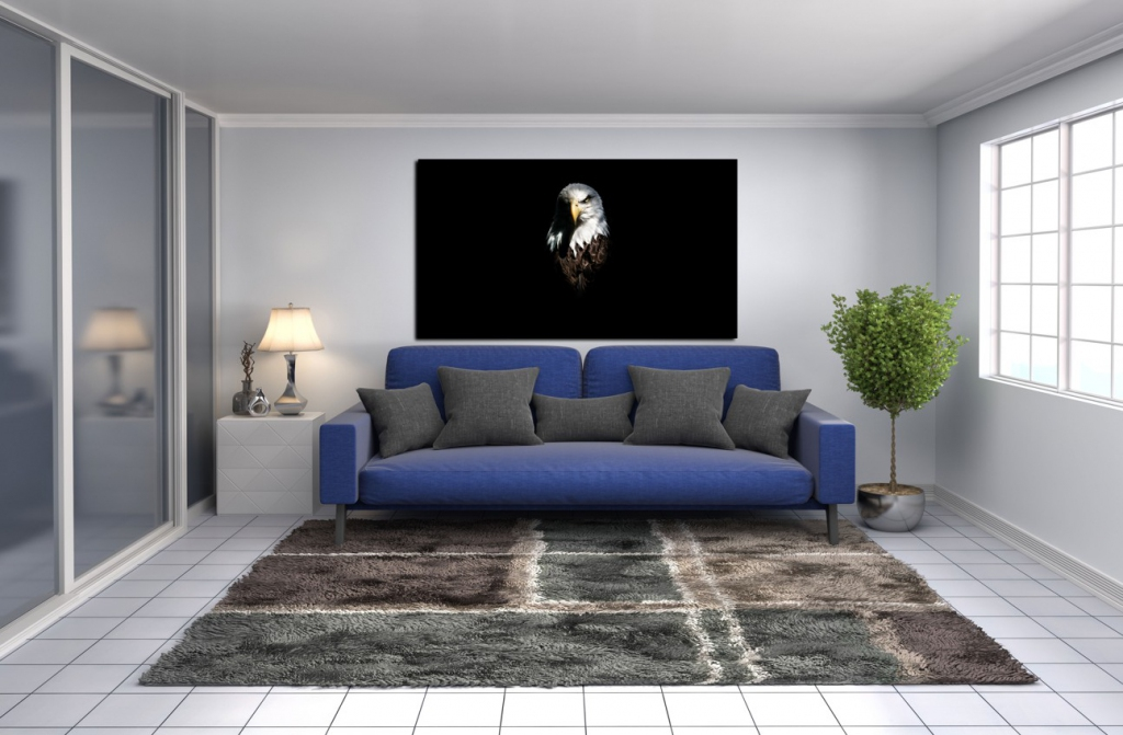 Obraz Orel, 90x60 cm