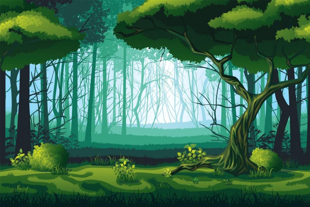 Obraz Pohádkový les, 90x60 cm
