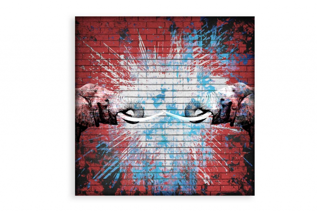 Obraz Sloní síla, 45x30 cm