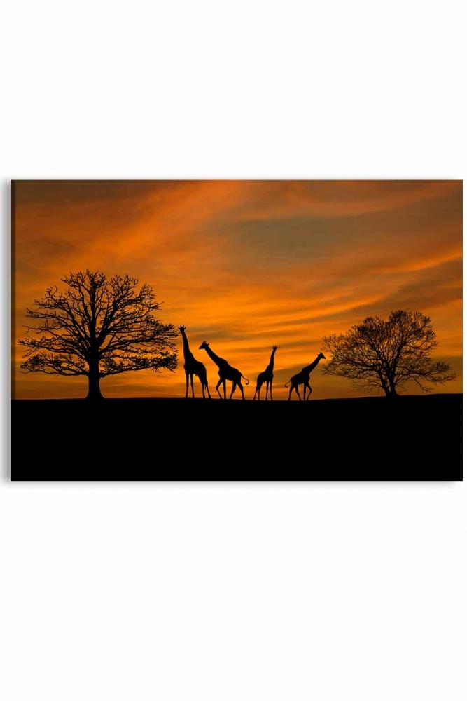 Obraz Západ slunce na safari, 120x80 cm