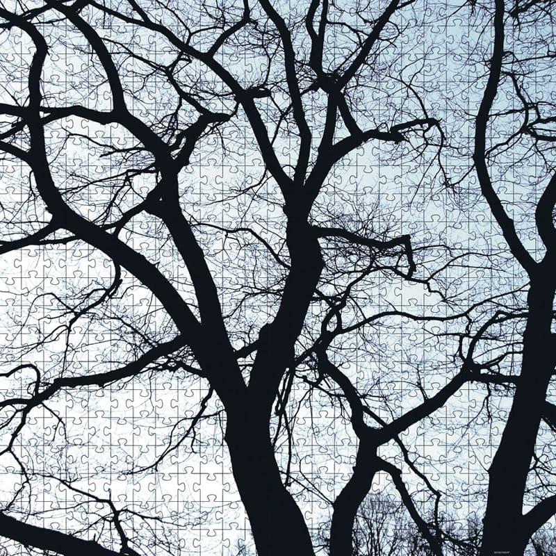 Puzzle Old Trees 500 dílků, 50x50 cm