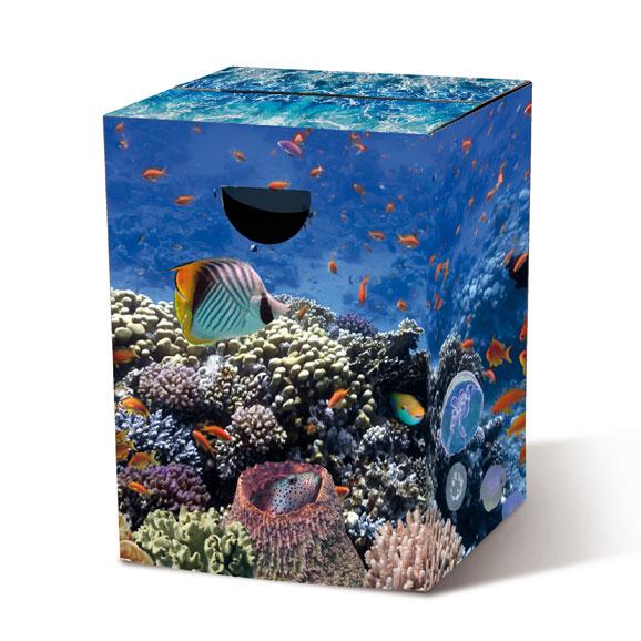 Stolička / stolek z vlnité lepenky Aquarium
