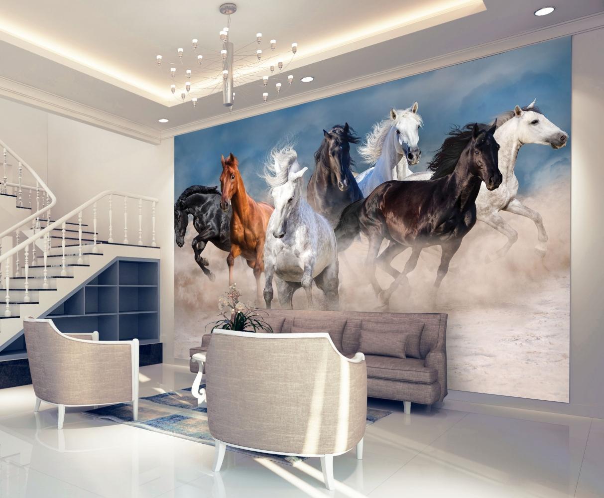 Tapeta Koně v klusu, 216 x 140 cm