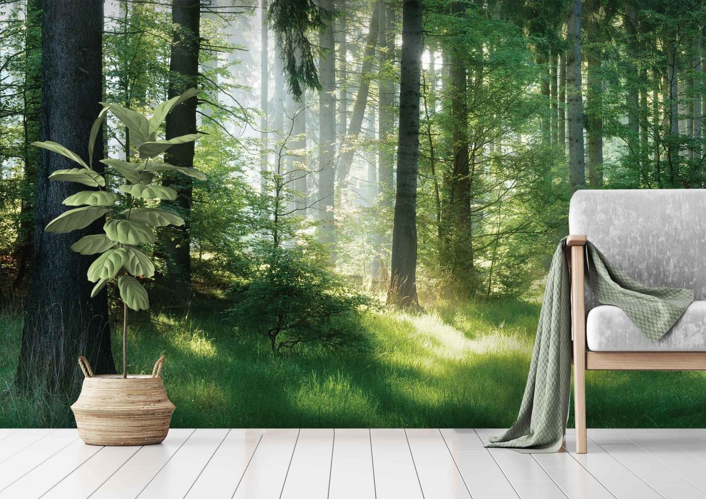 Tapeta Lesní pohoda, 288 x 200 cm