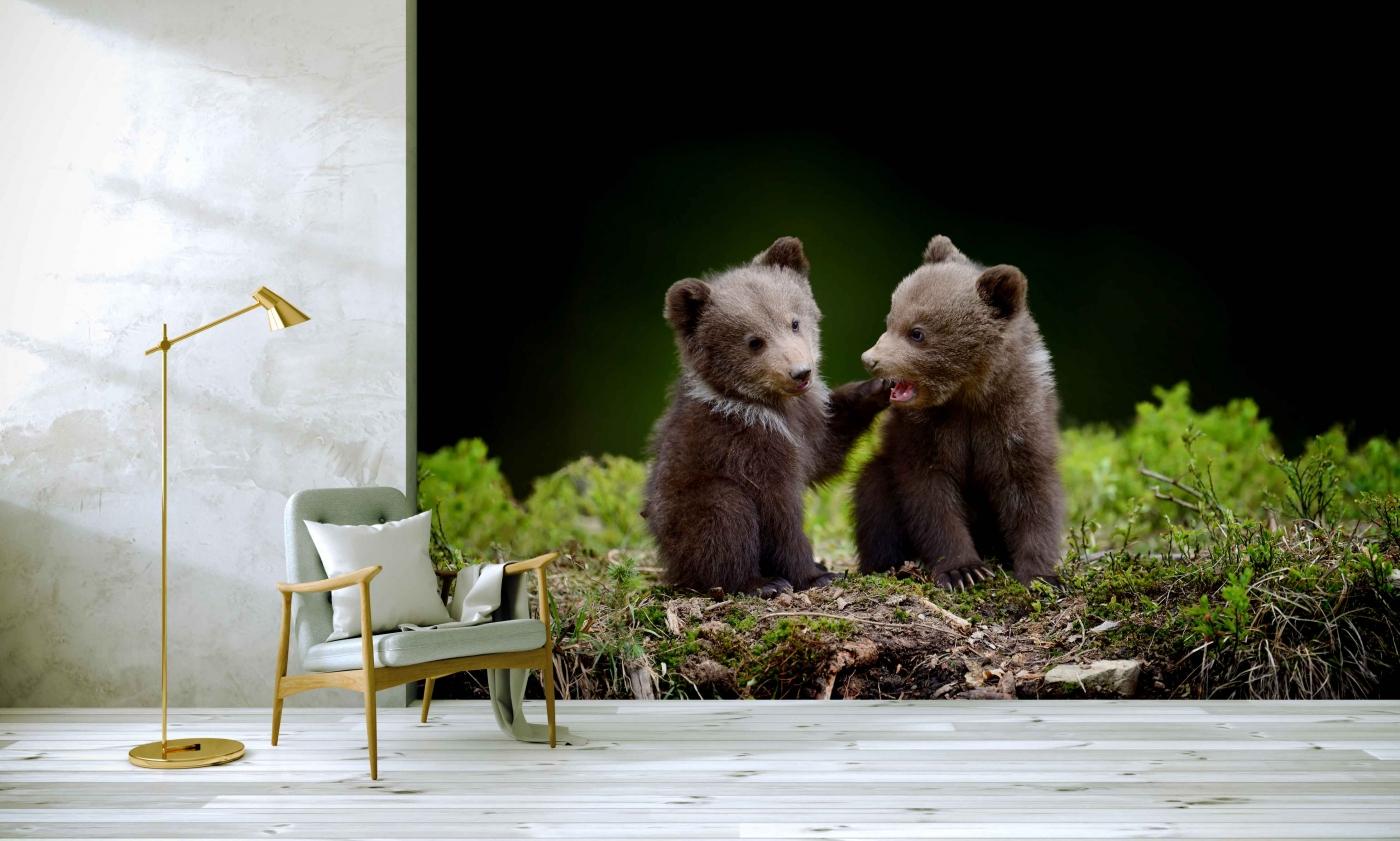 Tapeta Roztomilá medvíďata, 360 x 260 cm